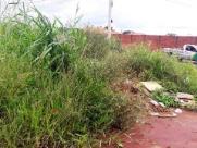 Mato alto e lixo em terreno de Araraquara preocupa moradores do bairro Valle Verde