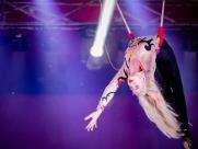Circo Bremer estreia em Campinas no Parque das Bandeiras