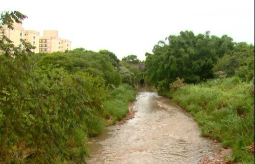 ACidade ON - São Carlos - Estudo propõe criar parques arborizados para combater enchentes em São Carlos