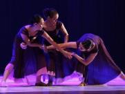 """Campinas recebe """"Tudo de Dança"""" com mostras e oficinas"""