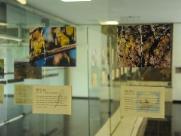 Exposição de fotos associa belezas do Campus São Carlos da UFSCar a bandas de rock