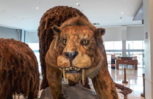 """Exposição """"Gigantes da Era do Gelo"""", no shopping Jaraguá de Araraquara - Foto: ACidade ON - Araraquara"""