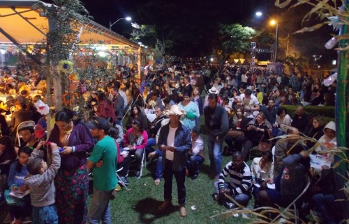 Divulgação - Festa no ano passado reuniu 3 mil pessoas. Foto: Divulgação