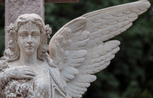 Weber Sian / A Cidade - Cemitério da Saudade