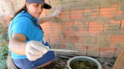 Em meio à covid-19, Campinas tem 703 casos de dengue até março
