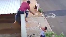VÍDEO: Dupla furta cachorro em residência na região