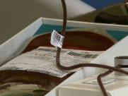 Falta de bolsas de sangue faz estudante criar