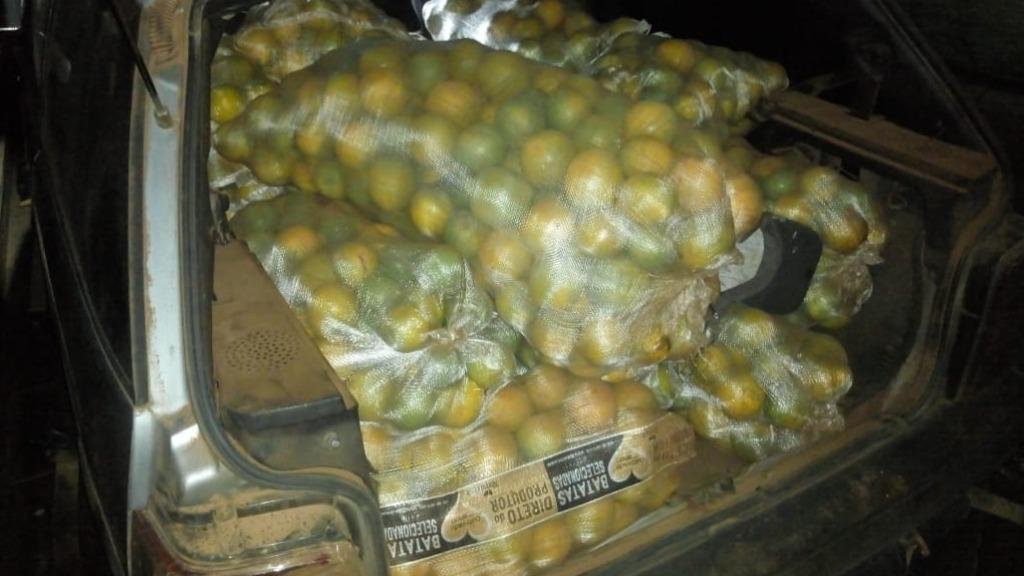 Dupla é presa furtando 10 sacos de laranjas de fazenda em Ibaté. Foto: Divulgação/PM - Foto: ACidade ON - São Carlos