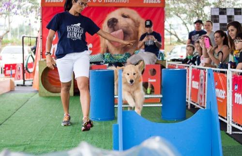 ACidade ON - São Carlos - Iguatemi promove Pet Day em São Carlos
