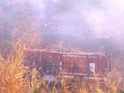 Incêndio destrói área de reflorestamento na USP de Ribeirão Preto