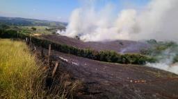 Vegetação no Fonte Mécia, em Valinhos, pega fogo