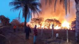 Incêndio de grandes proporções atinge canavial e usina em Tambaú