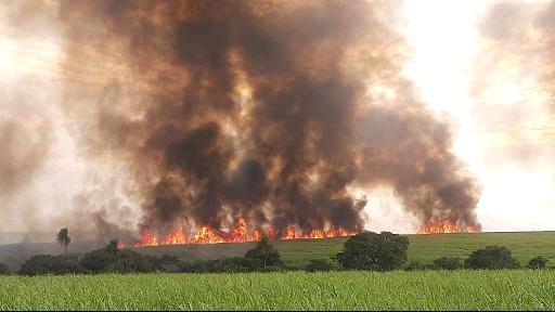 "Incêndio rendeu multa ""pesada"" em Ibaté. Foto: Polícia Militar Ambiental - Foto: Divulgação"