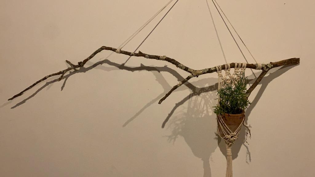 Suporte de plantas de macramê num galho seco - Foto: Casa em Verso e Prosa