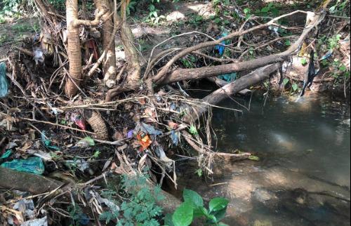 Margem do Córrego do Tanquinho é usada para descarte de lixo e entulho (Milton Filho/CBN Araraquara) - Foto: (Milton Filho/CBN Araraquara)
