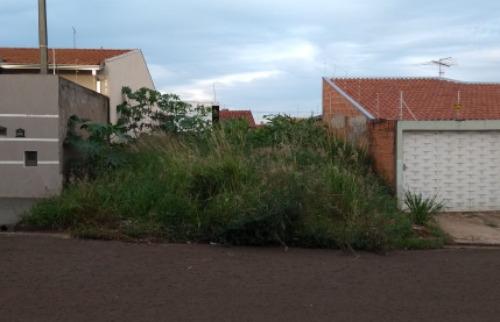 ACidade ON - Araraquara - Mato alto no Igaçaba já tomou a calçada e chegou na rua