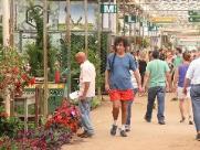 Ceasa abre licitação para novos boxes no Mercado de Flores