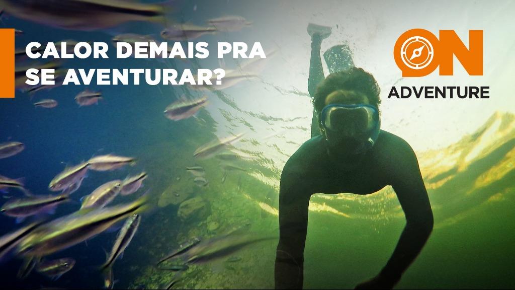 Mergulho de Snorkel nas águas cristalinas do Paraíso Perdido - Foto: Sanner Moraes