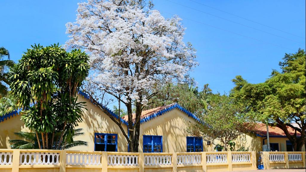 Museu Casa de Portinari (Foto: Divulgação) - Foto: Agências