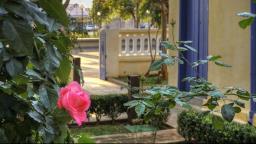 Fauna e Flora são temas de atividades do Museu de Portinari