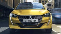 Nova geração do Peugeot 208: filhotes de leão