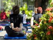 Yoga cerebral de graça é atração no Parque do Botânico