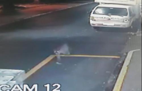 Reprodução EPTV - Câmera de segurança flagrou animal em rua