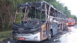 Ônibus que transportava 9 passageiros pega fogo em rodovia da região