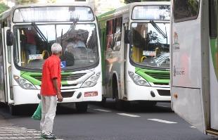 Milena Aurea / A Cidade - Ônibus