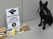 Cão acha droga em encomendas dos Correios de Indaiatuba