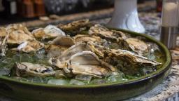 Evento traz bar de gelo com ostras frescas para Ribeirão Preto