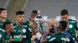 O Palmeiras foi o maior campeão do ano que não terminou