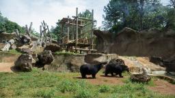 Parque Ecológico completou 44 anos de vida em São Carlos