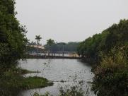 Cinco opções gratuitas para curtir o domingo em Araraquara