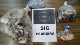 Polícia Civil apreende 1kg de drogas no Horto em Pedreira