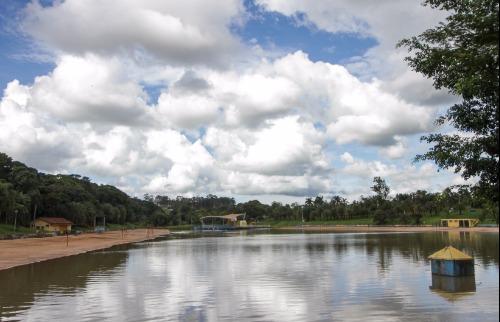 PINHEIRINHO - Foto: Da reportagem