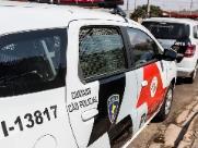Com apoio de cães, Polícia apreende drogas em área de mata