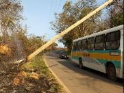 Incêndio atinge postes que ficam pendurados em estrada