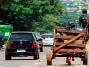 Vereador quer proibir transporte por carroças