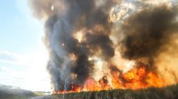 Araraquara registra aumento de 86% na incidência de queimadas