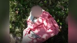 Recém-nascido é encontrado abandonado em mata de Serra Azul