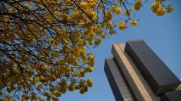BC vai avaliar o impacto do coronavírus sobre a inflação