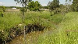 Pesquisa aponta caminhos para preservar Ribeirão do Feijão