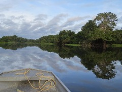 Rio Guaporé, na Amazônia (Foto: Pixabay) - Foto: Pixabay