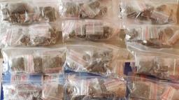 Menor é preso com 282 porções de drogas na Vila Izabel