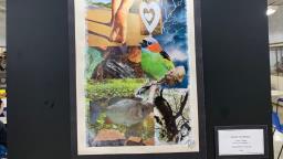 BCo da UFSCar recebe exposições de colagens, fotos e tecidos