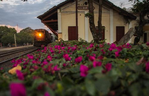 ACidade ON - Araraquara - Secretaria de Cultura faz levantamento inédito sobre patrimônio histórico de Araraquara