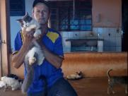 Desempregado pede ajuda para cuidar de 72 gatos e sete cães abandonados