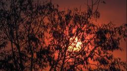 Quarta (16) será mais um dia de calor e seca em Ribeirão