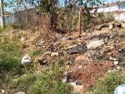 Entulho em terreno atrai escorpiões na zona Norte de Ribeirão